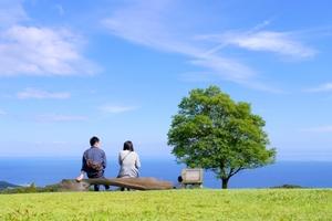 dear-bride-tokyo-date-park.jpg