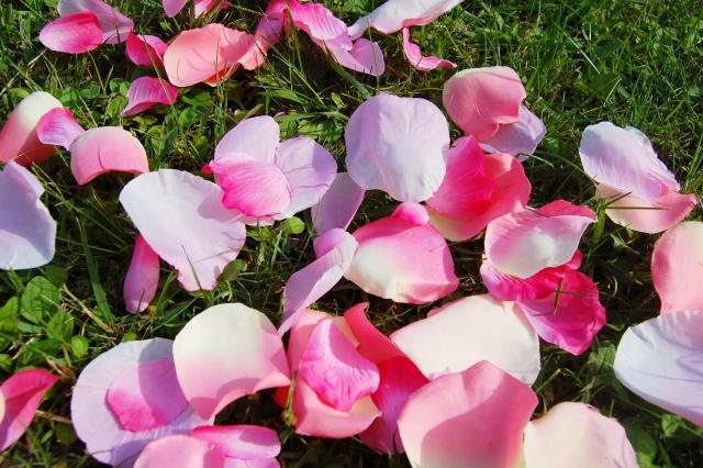 dear-bride-tokyo-flower-green.jpg